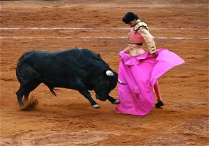 When you fall into the trap of demonization, you can be as easily manipulated as the bulls in the Spanish corridas. (Photo: Francis Heylighen )